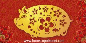 Horoscopo Chino: Cerdo